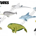 Sea-creatures-2D-Game-Assests