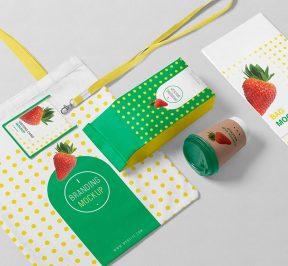 packaging-mockup